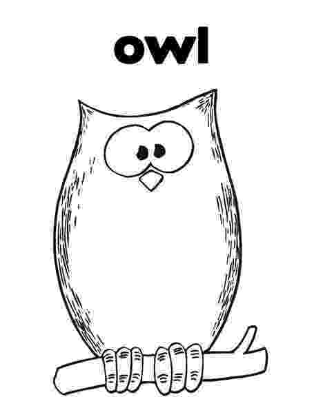 printable owl colouring barn owl colouring page detailed coloring pages owl colouring owl printable
