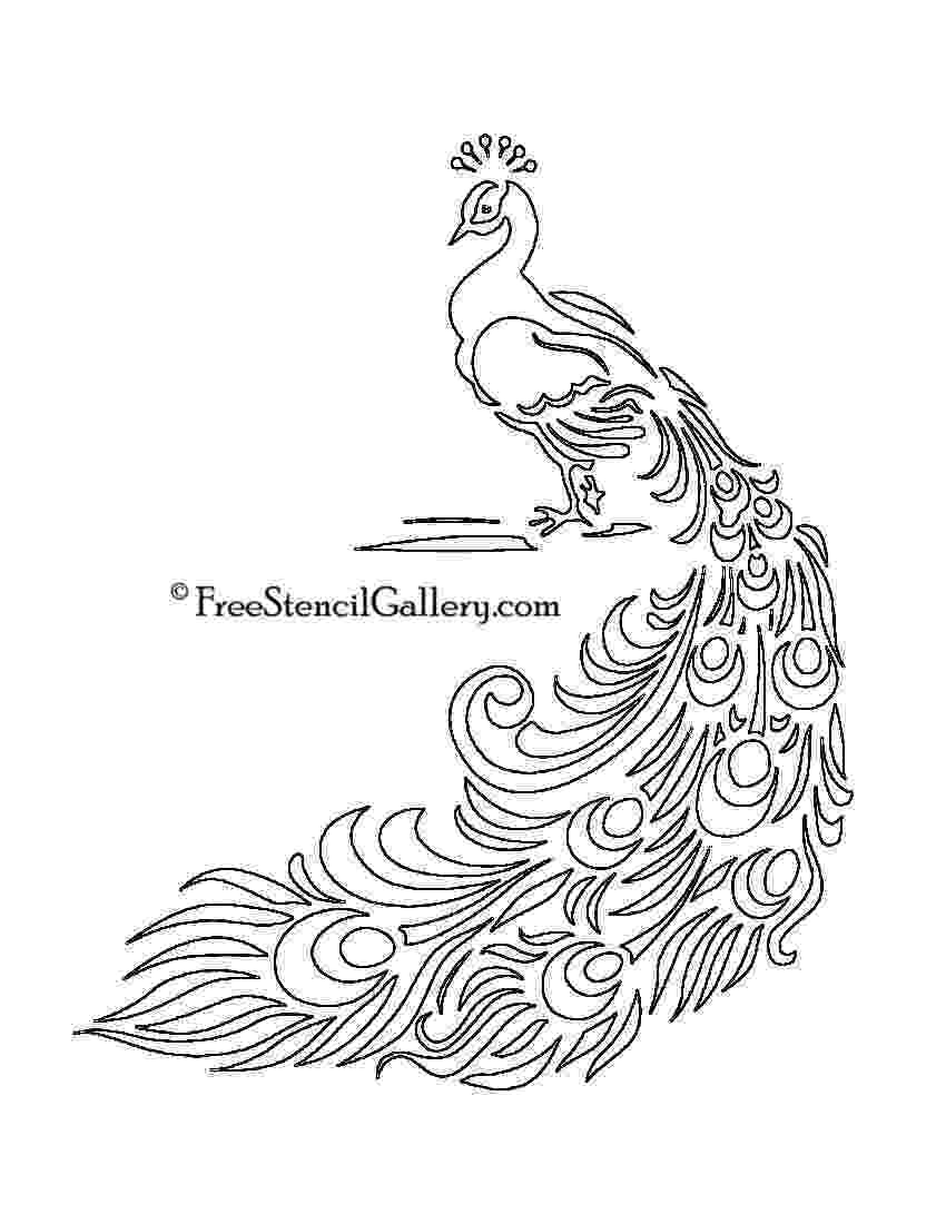 printable peacock stencil download your free peacock stencil here save time and stencil peacock printable