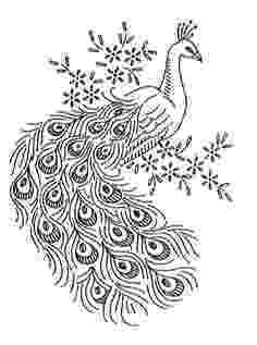 printable peacock stencil peacock stencil at rs 1270 piece painting stencil id printable peacock stencil