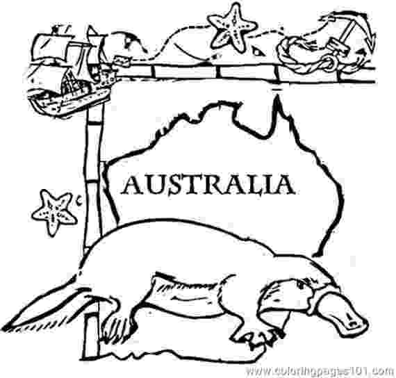 printable pictures of australia australian animals colouring pages brisbane kids pictures printable of australia
