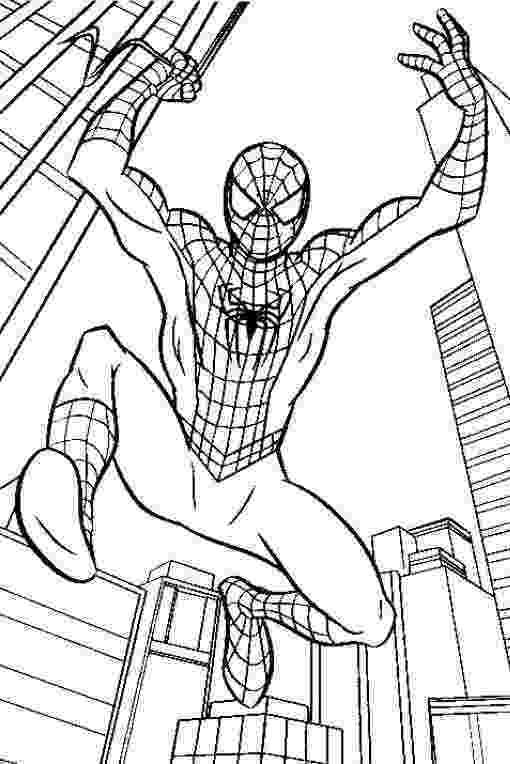 printable spiderman free printable spiderman coloring pages for kids printable spiderman