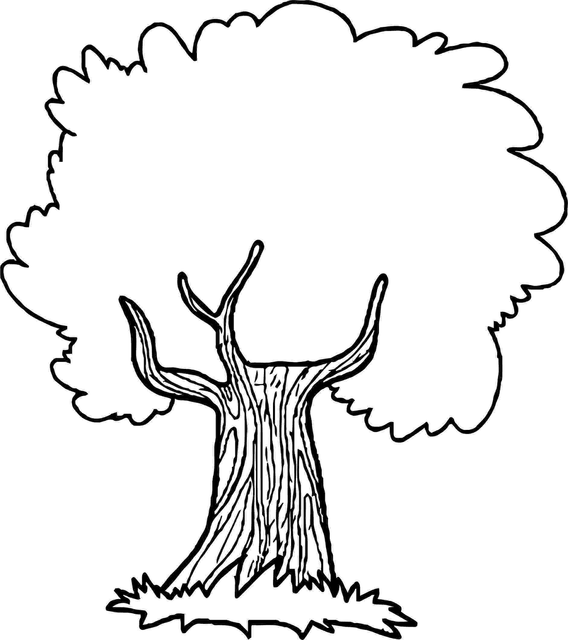 printable tree coloring page free printable tree coloring pages for kids page coloring tree printable