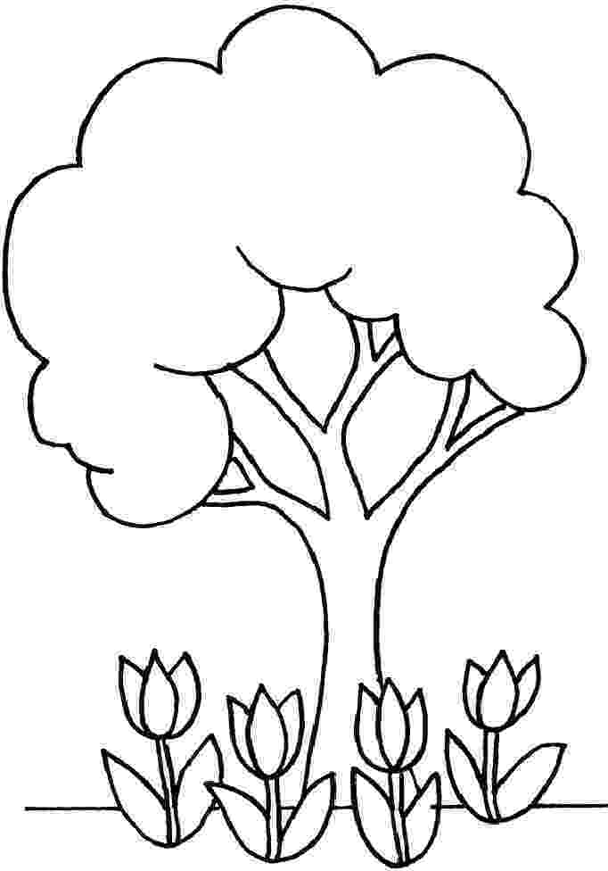 printable tree coloring page free printable tree coloring pages for kids printable coloring page tree