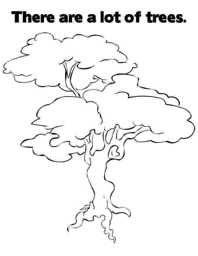 printable tree coloring page free printable tree coloring pages for kids printable tree coloring page