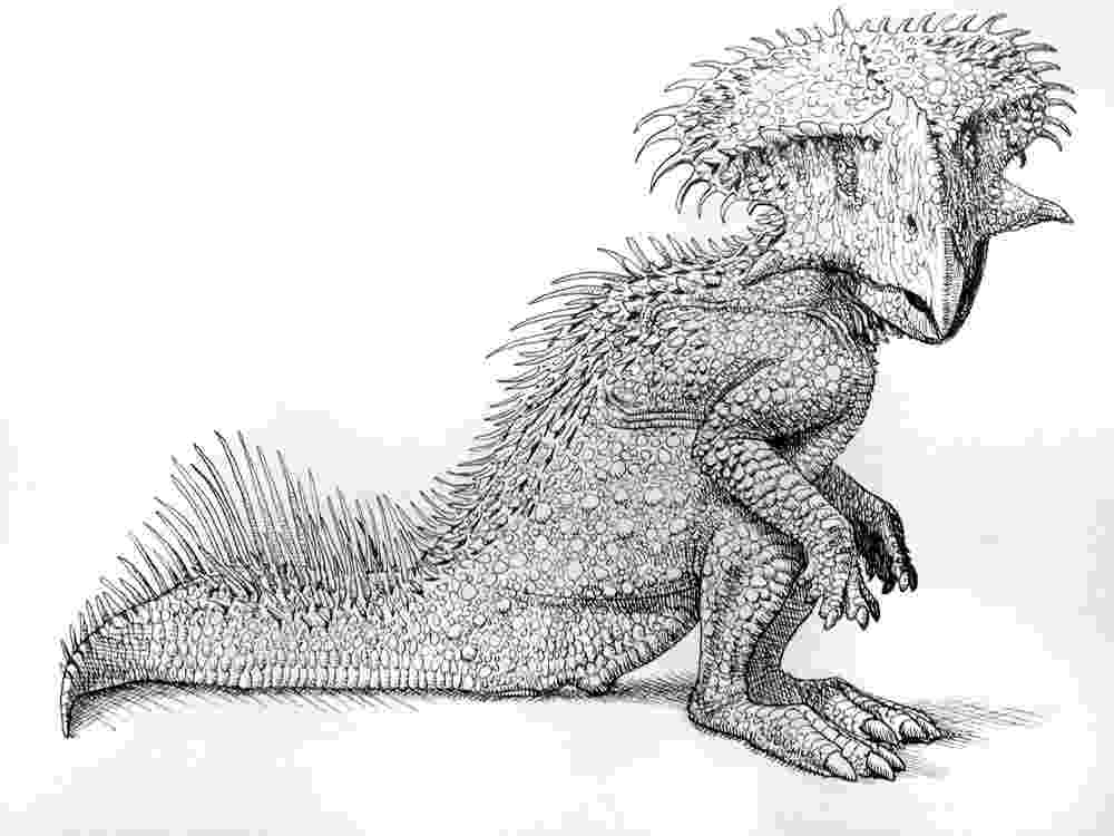 protoceratops pictures protoceratops by pheaston on deviantart pictures protoceratops