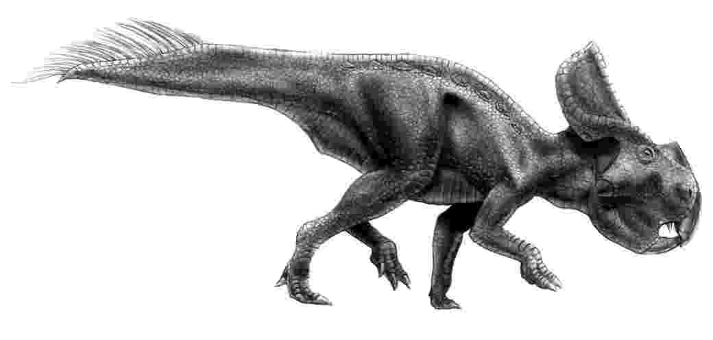 protoceratops pictures protoceratops by saeto15 on deviantart pictures protoceratops