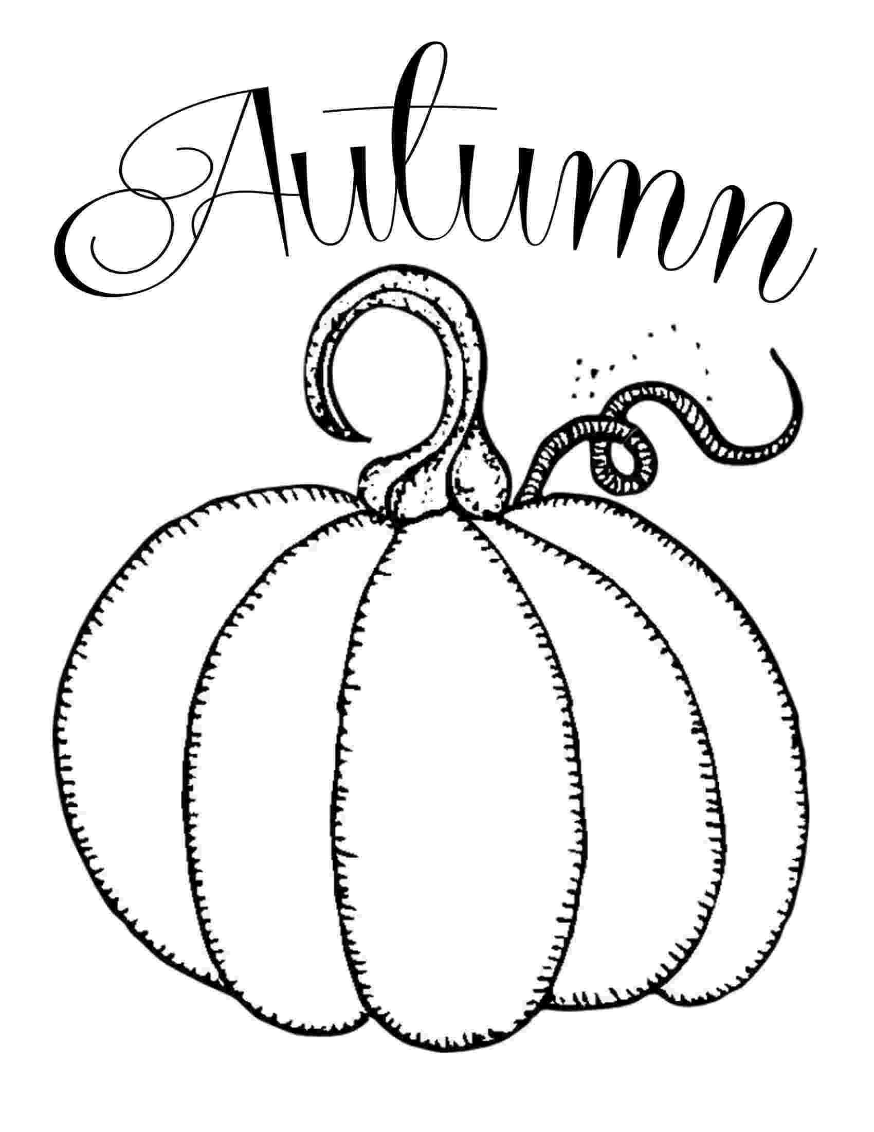 pumpkin coloring pattern pumpkin outline printable clipartioncom coloring pumpkin pattern