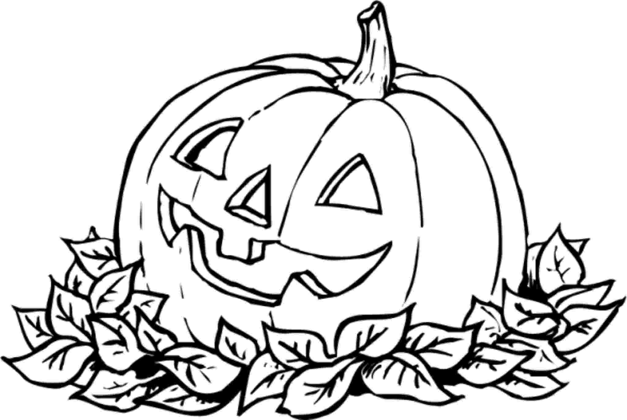 pumpkins coloring page print download pumpkin coloring pages and benefits of pumpkins coloring page