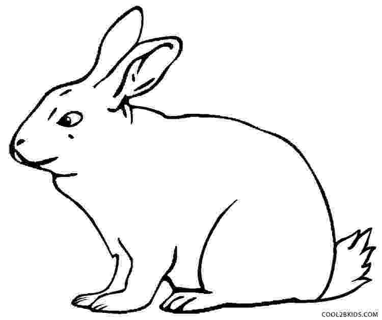 rabbit coloring pages for preschoolers printable rabbit coloring pages for kids cool2bkids for rabbit coloring preschoolers pages