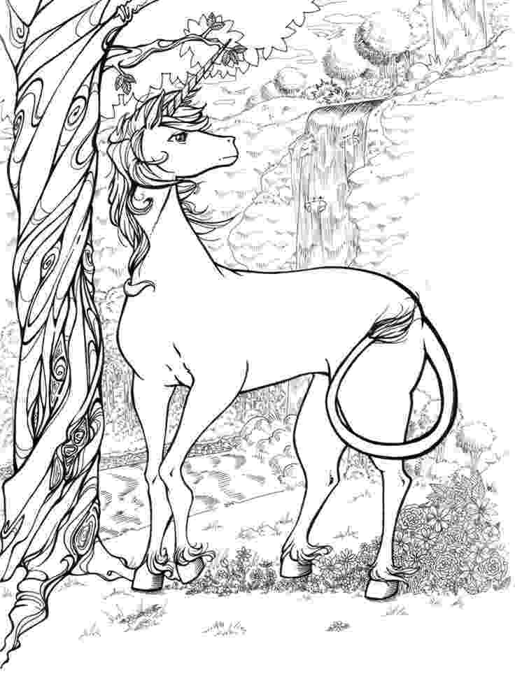 realistic colouring pages realistic unicorn coloring pages coloring home pages colouring realistic