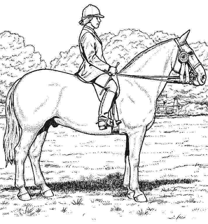 realistic horse coloring pages to print horse coloring pages for kids coloring pages for kids print coloring horse pages to realistic