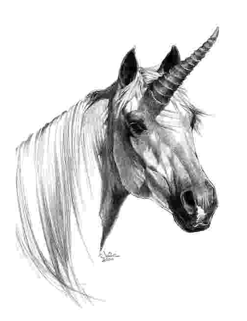 realistic unicorn realistic unicorn coloring pages download and print for free realistic unicorn
