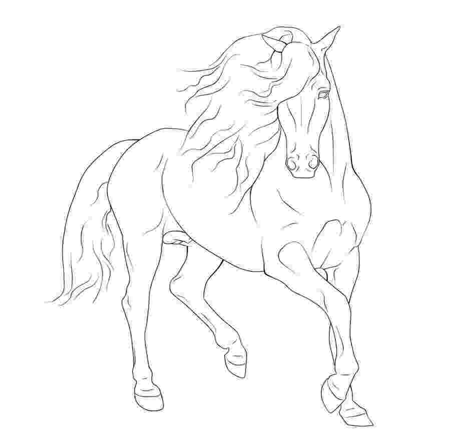rearing horse coloring pages 50 best horse coloring pages images on pinterest horse rearing coloring pages
