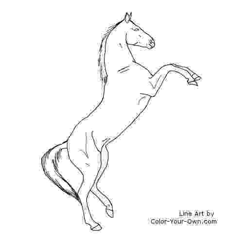 rearing horse coloring pages coloring pages of horses rearing at getcoloringscom horse coloring pages rearing