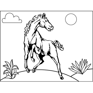rearing horse coloring pages horse head rearing up coloring page purple kitty horse coloring pages rearing
