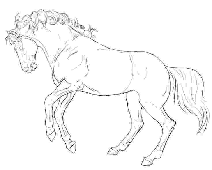 rearing horse coloring pages isolated black outline rearing horse on white background horse coloring rearing pages