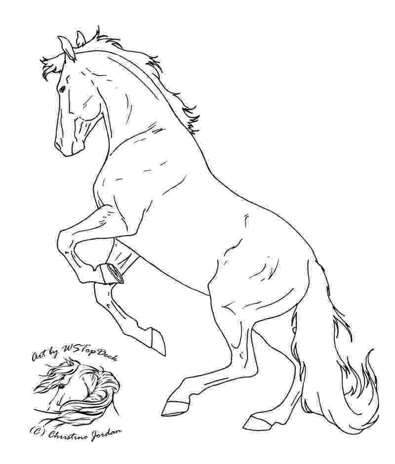 rearing horse coloring pages palomino horse coloring pages download and print for free coloring rearing pages horse