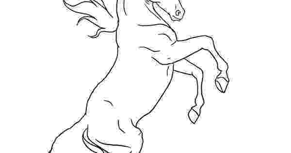 rearing horse coloring pages rearing horse coloring page coloring pages rearing horse