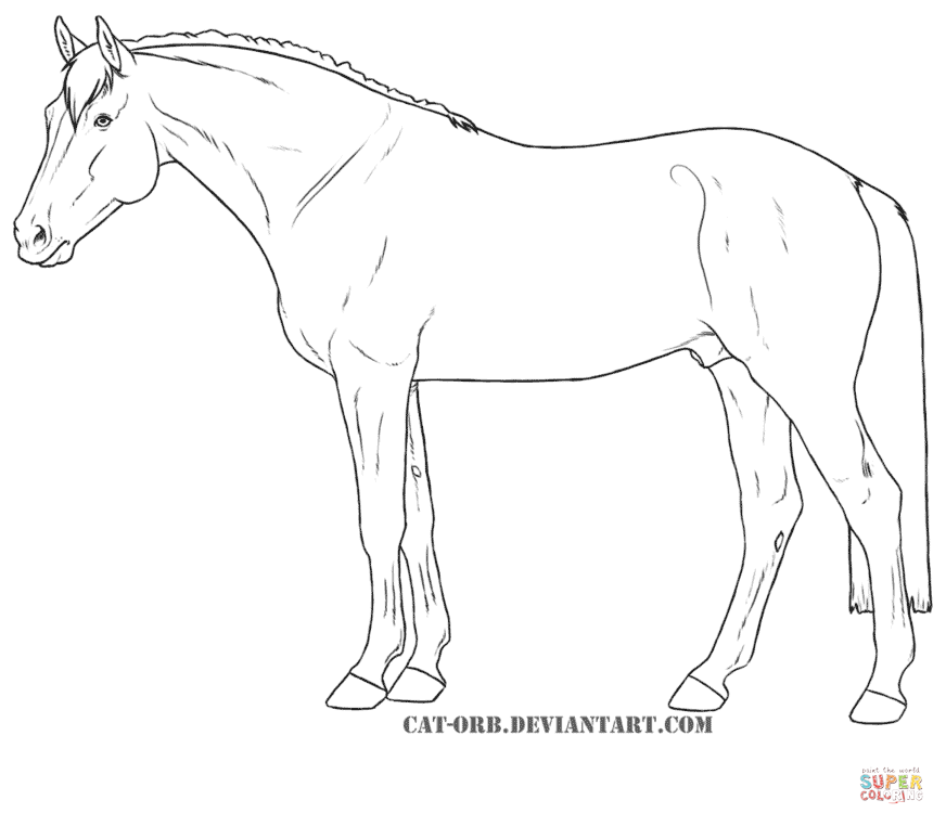 rearing horse coloring pages rearing horses coloring coloring pages horse rearing pages coloring