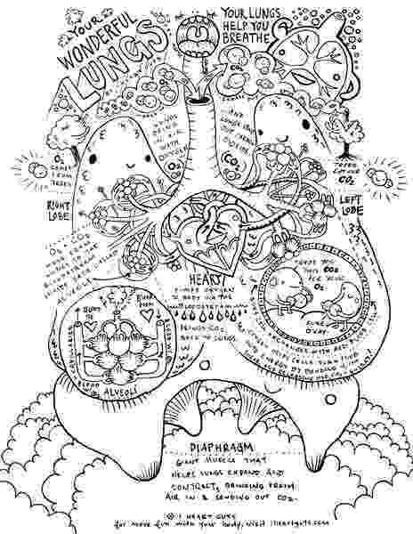 respiratory system coloring sheet respiratory system coloring page by i heart guts system sheet respiratory coloring