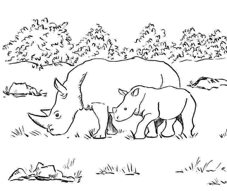 rhino coloring page free printable rhinoceros coloring pages for kids rhino coloring page