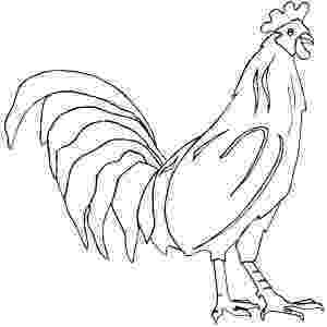 rooster coloring pages free printable rooster and fox coloring pages coloring home free rooster coloring printable pages