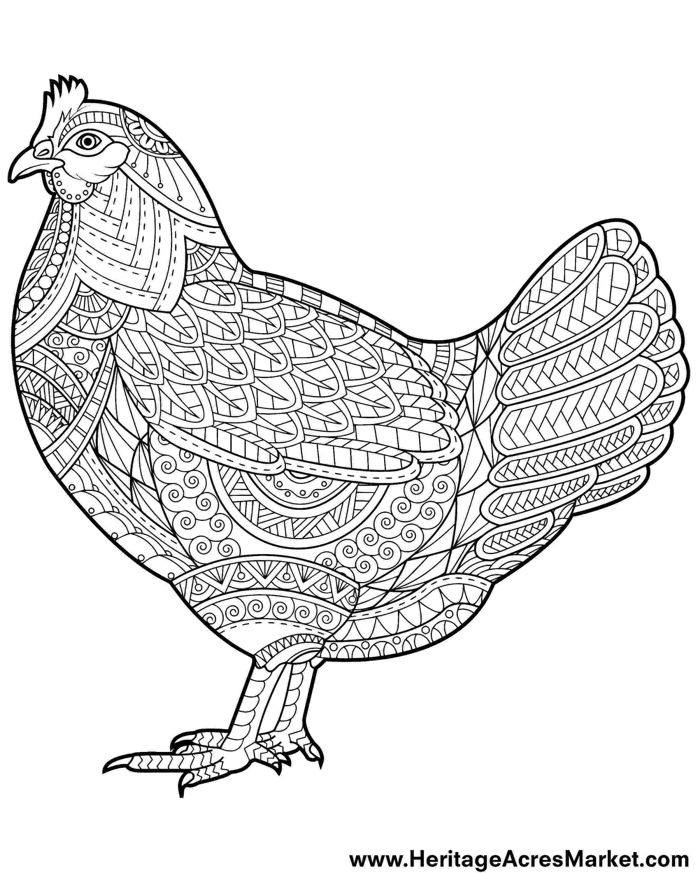 rooster coloring pages free printable rooster and hen coloring page free printable coloring pages free rooster pages coloring printable