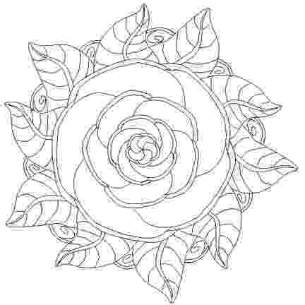 rose coloring pages for adults 80 best keep calm and color images on pinterest coloring pages adults rose coloring for