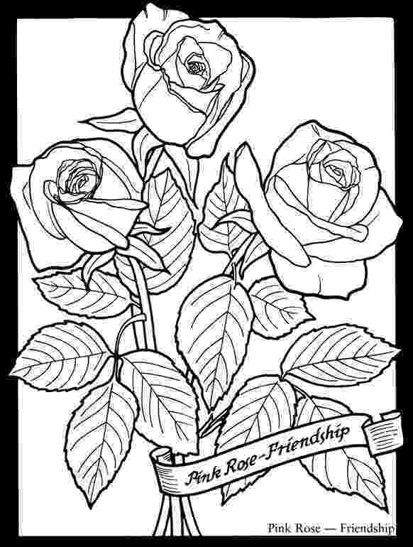 rose coloring pages for adults free roses printable adult coloring page the graphics fairy adults pages coloring for rose