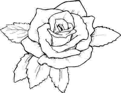 rose coloring pages for adults hearts with roses pages 10290 bestofcoloringcom coloring rose for pages adults