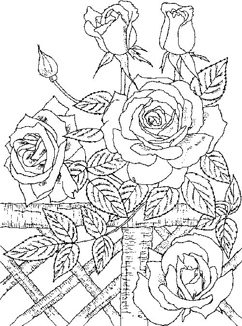 rose coloring pages for adults quotpour voir la vie en rosequot coloring book agenda 2016 on coloring pages adults rose for