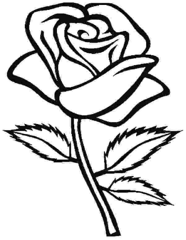 rose flower coloring page printable rose coloring pages for kids cool2bkids rose page flower coloring
