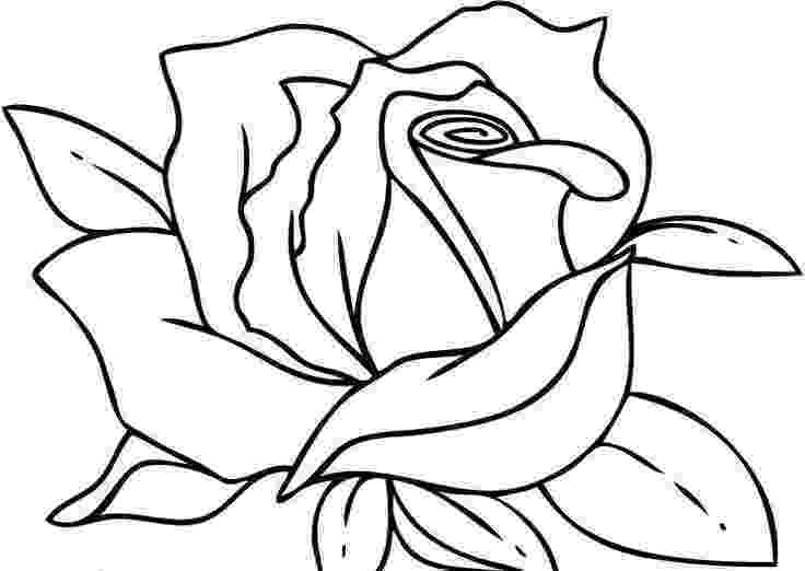rose flower coloring page roses coloring pages getcoloringpagescom flower page coloring rose