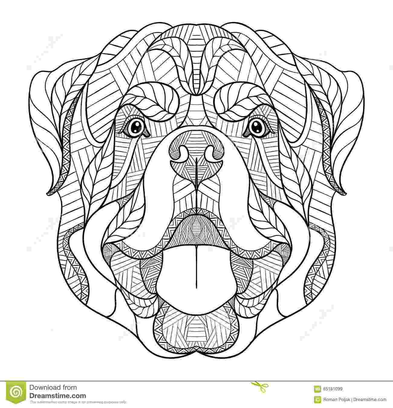 rottweiler coloring book ethnic detail zentangle dog doodle illustration for rottweiler book coloring