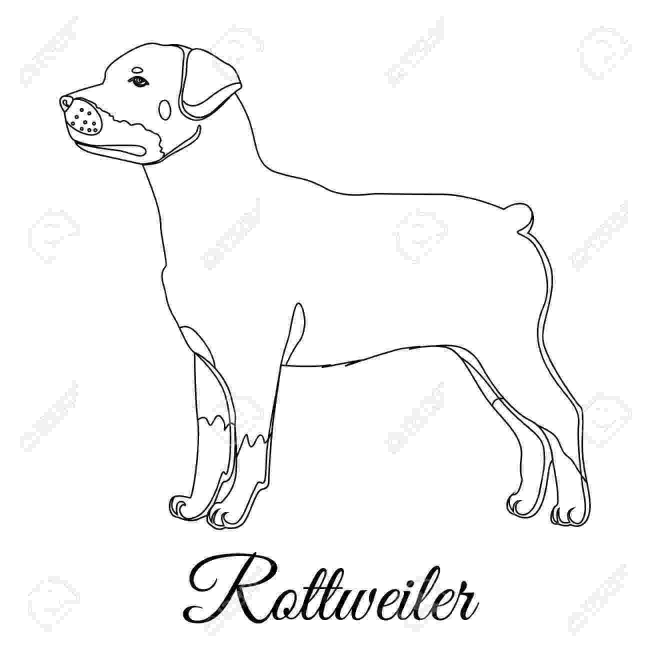 rottweiler coloring book pug tangle zentangle drawing pinterest tangled book rottweiler coloring