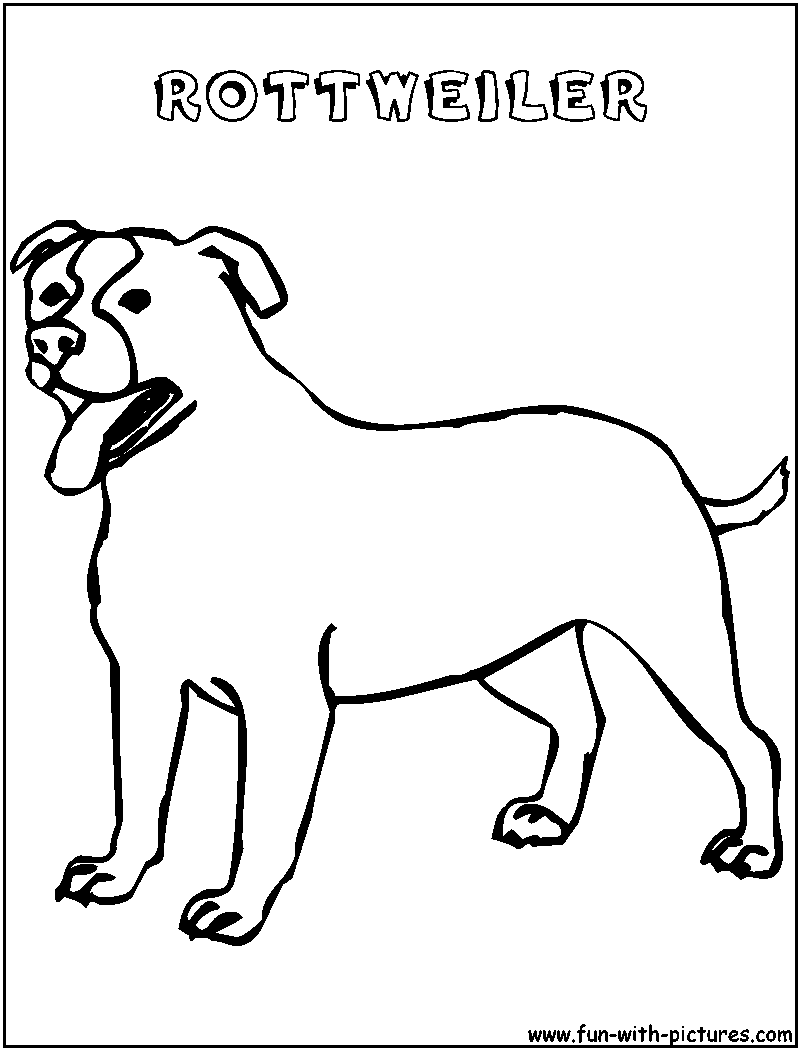 rottweiler coloring book rottweiler coloring download rottweiler coloring for free rottweiler book coloring