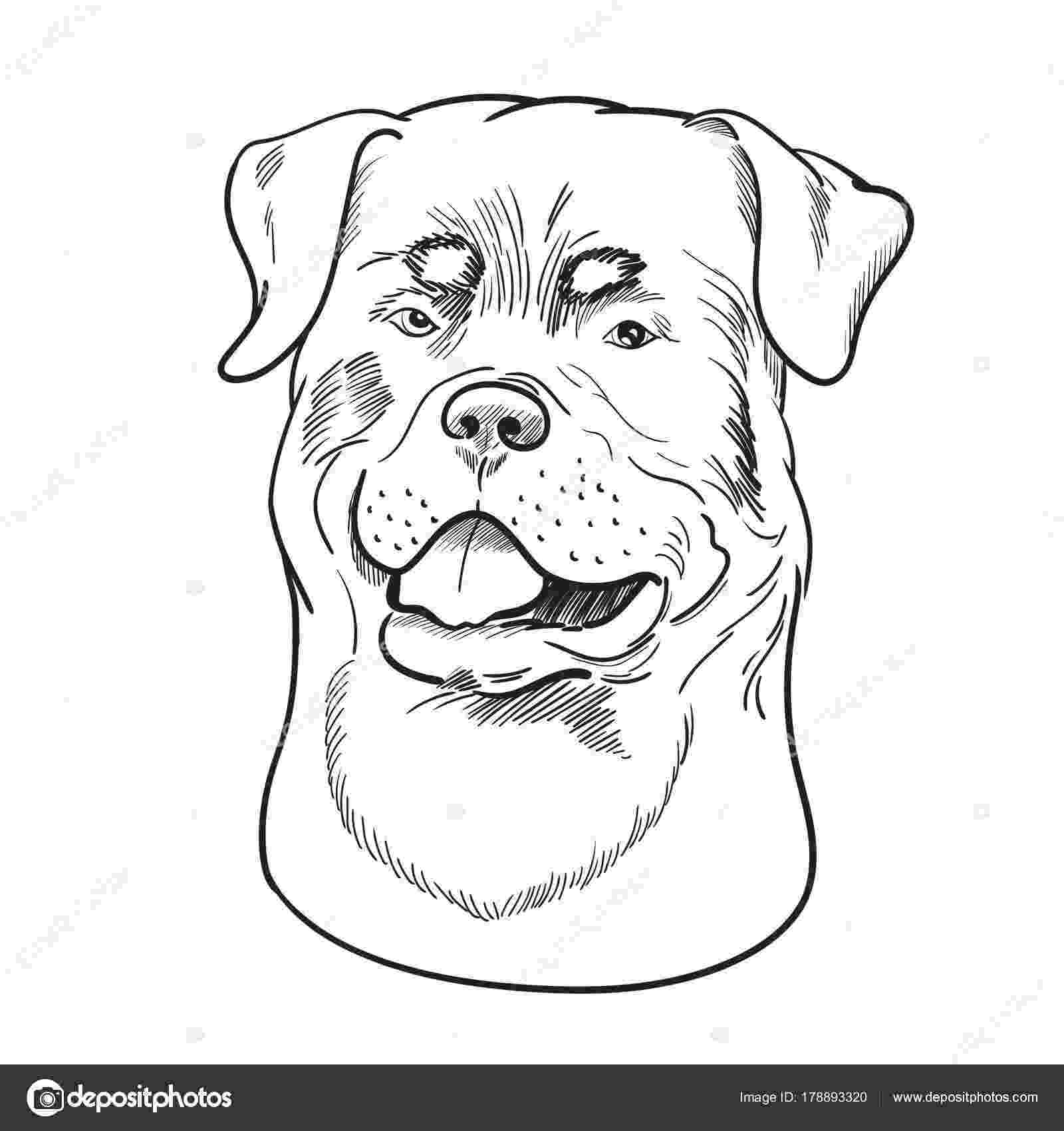 rottweiler coloring book rottweiler outline by thenekohimechan on deviantart rottweiler coloring book