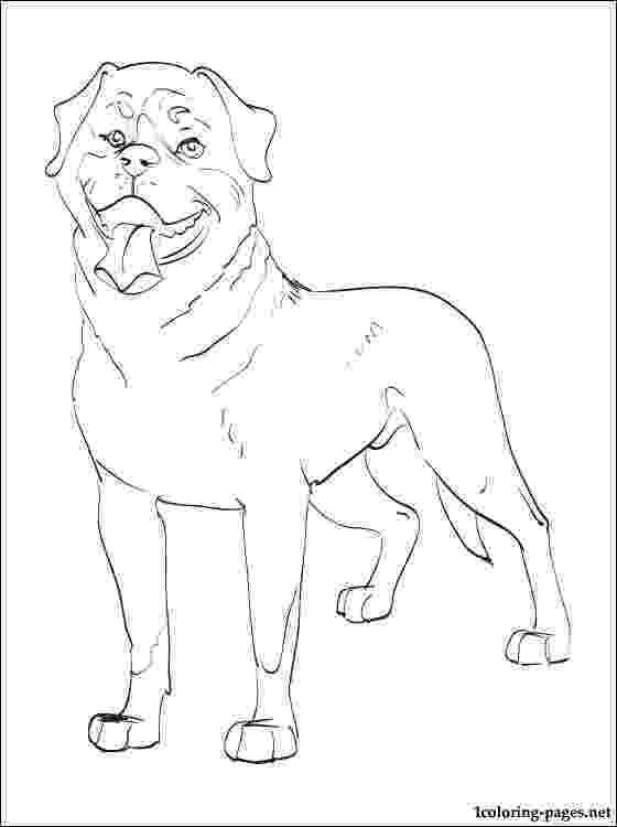 rottweiler coloring book rottweiler puppy coloring page free printable coloring pages book coloring rottweiler