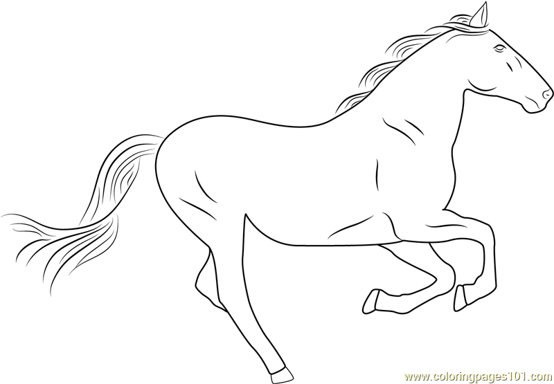 running horse coloring pages friesian horses running coloring pages coloring pages running horse coloring pages