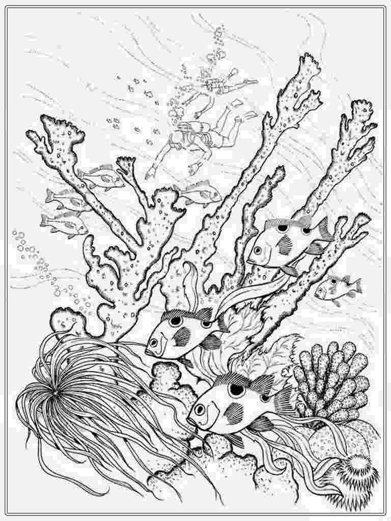 saltwater fish coloring pages coral reef fish predators gathering coloring pages kids saltwater coloring fish pages