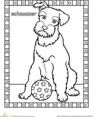 schnauzer coloring pages miniature schnauzer coloring page free printable pages schnauzer coloring