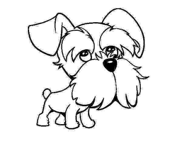 schnauzer coloring pages schnauzer terrier coloring page coloring pages schnauzer