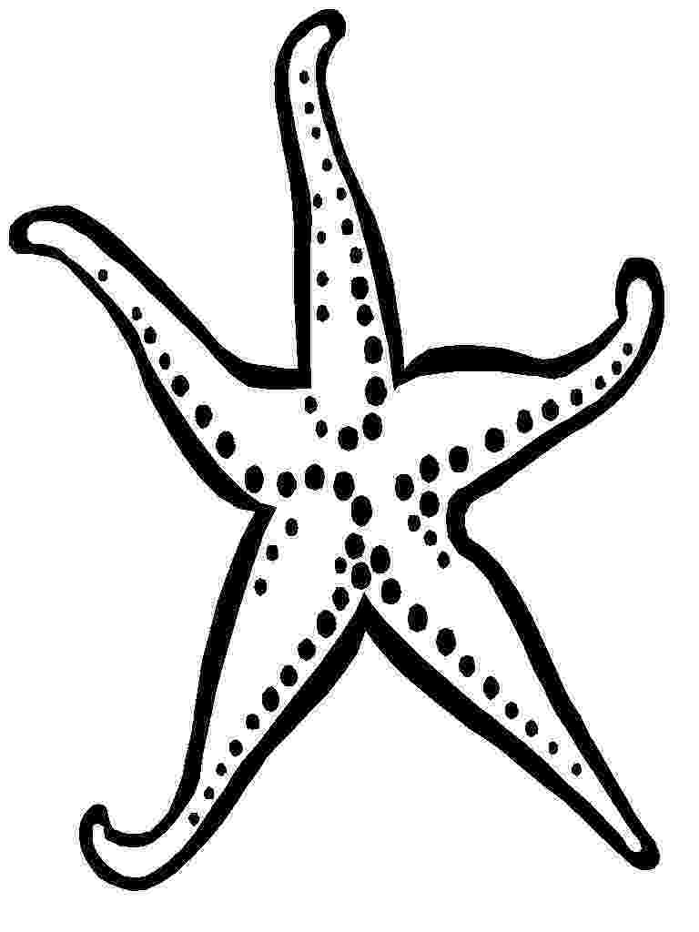 sea star pictures to color baby gear rentals kauai starfish coloring page pictures star color sea to