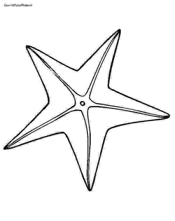 sea star pictures to color starfish coloring pages clipart panda free clipart images pictures color sea star to