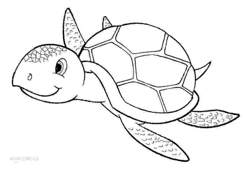 sea turtle to color giant green sea turtle coloring page download print to color sea turtle
