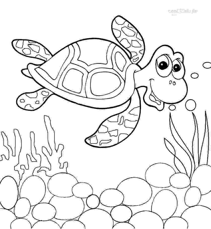 sea turtle to color sea turtle coloring nature to turtle sea color