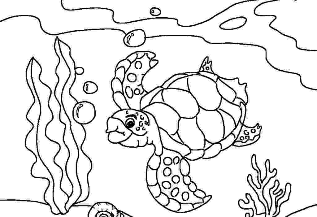 sea turtle to color sea turtle coloring pages getcoloringpagescom turtle to sea color