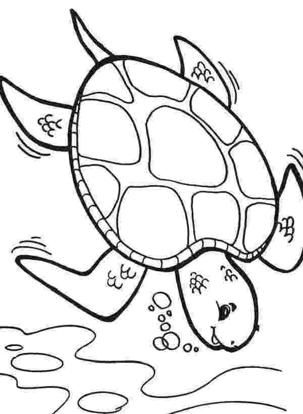 sea turtle to color underwater plants coloring pages at getcoloringscom sea turtle color to