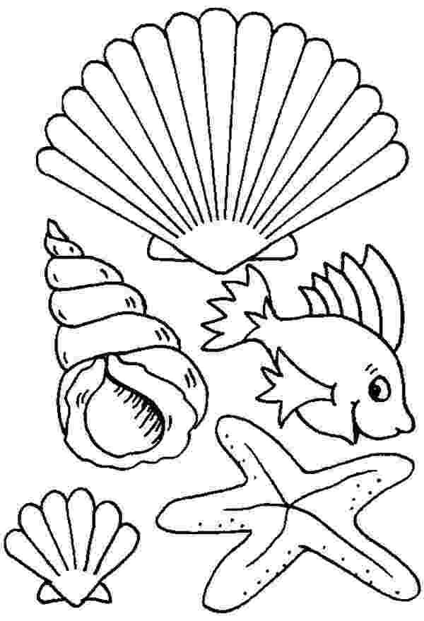seashell coloring page free printable seashell coloring pages for kids coloring page seashell