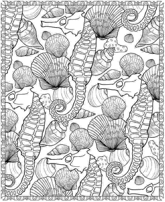 seashell coloring page seashell coloring pages to download and print for free seashell page coloring